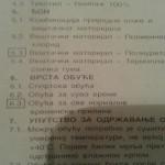 ivanjica_deklaracija_Sandra_Corpico2