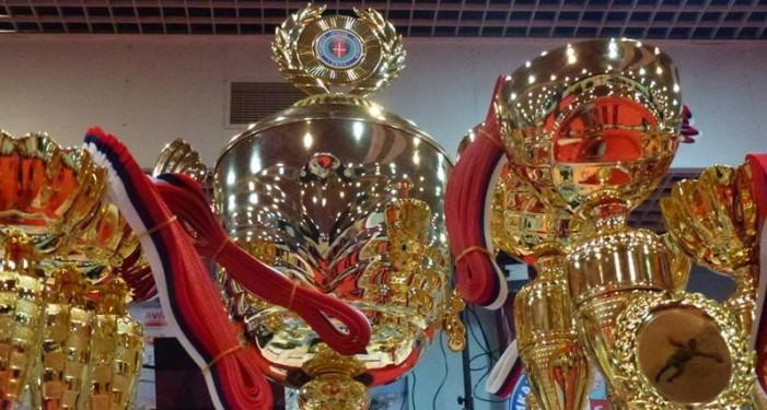 """Панчево: меморијални турнир """"Јужнобанатски хероји"""""""