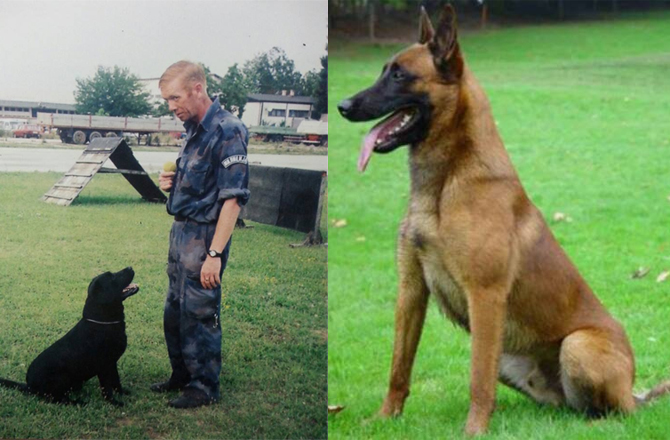 Полицијски пас угинуо на дан сахране свог водича!